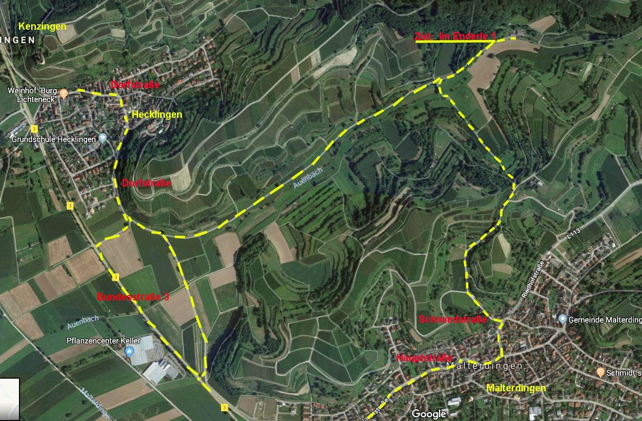 Die Immobilie im Bieterverfahren. Hier am Beispiel des Gasthauses Waldeck in Kenzingen / Hecklingen. Hier ein weiteres Beispiel der Aktivitäten