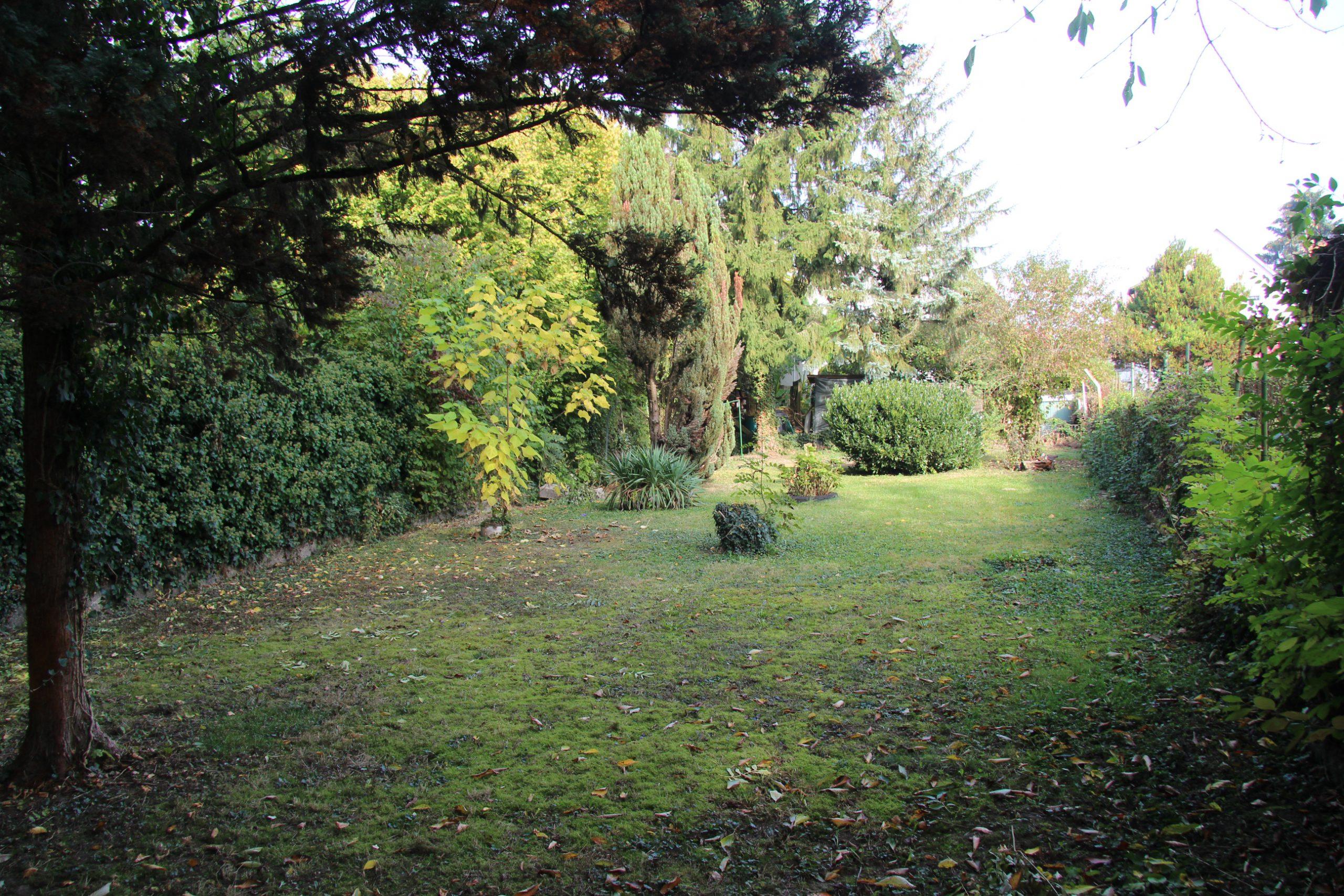 Blick auf das Gartengrundstück - Immobilie im freiwilligen Bieterverfahren
