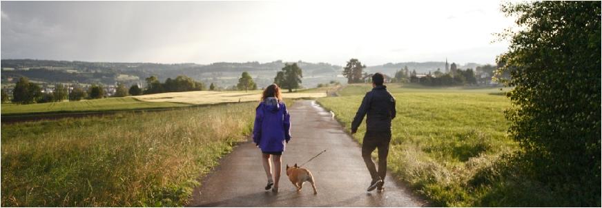Der freilaufende Hund im Mietrecht